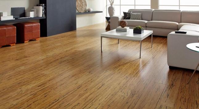 Mẫu sàn gỗ BG259